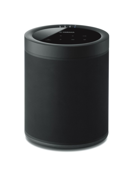 Yamaha MusicCast 20 (WX-021)